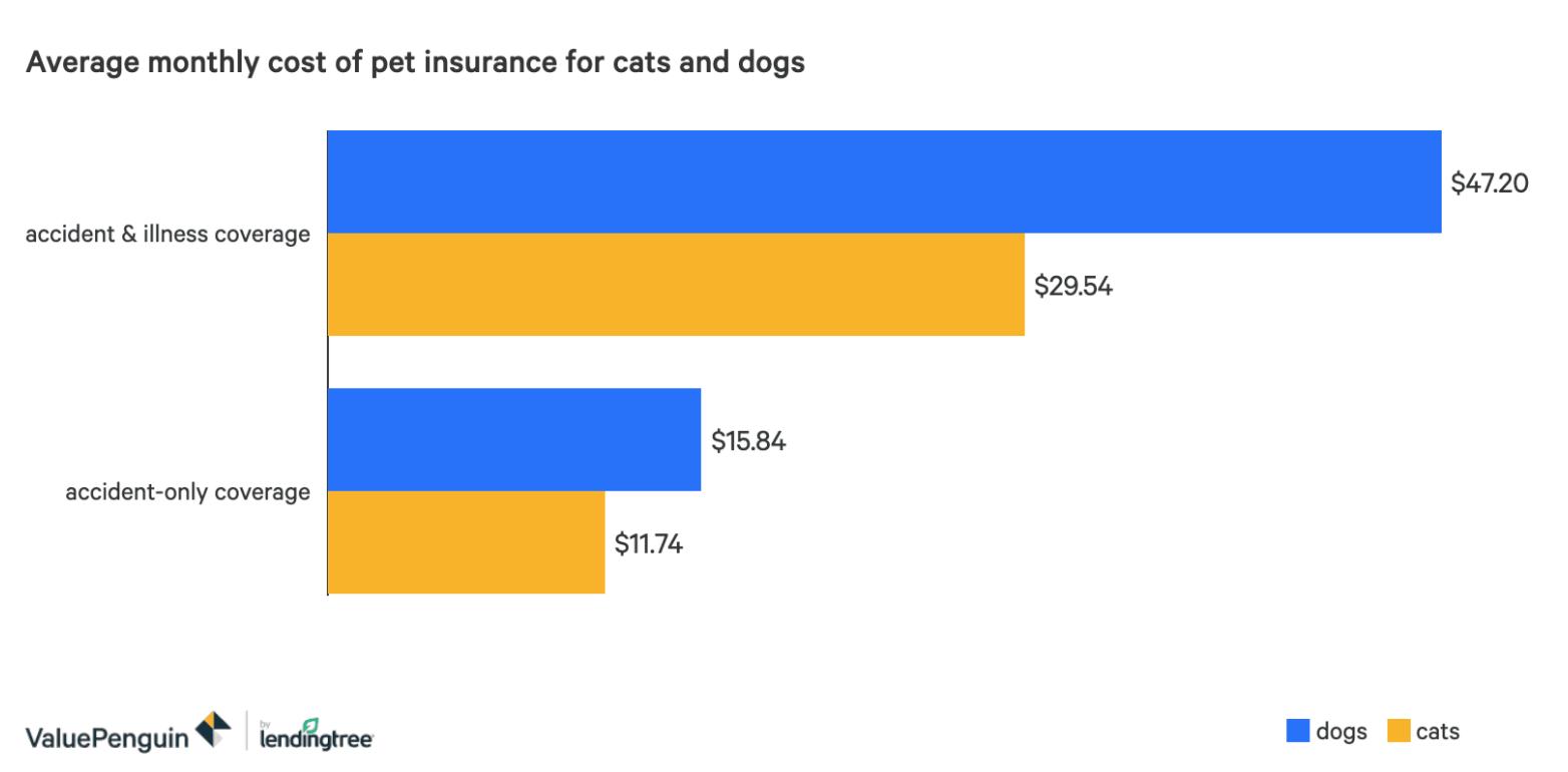 cuanto cuesta un seguro para perros