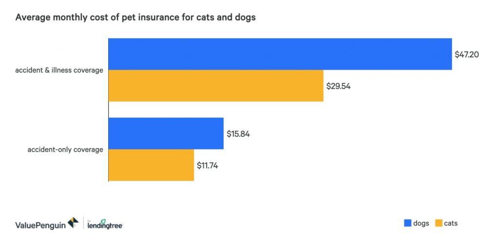 Costo promedio seguros para perros y gatos
