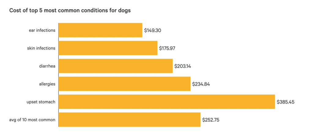 Costo de tratamiento para las 5 condiciones más comunes en los perros