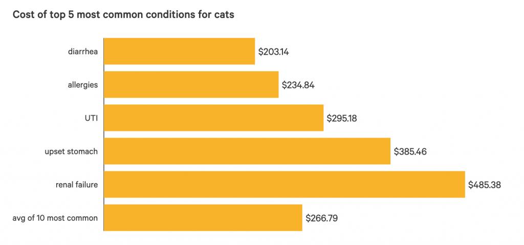 Costo de tratamiento para las 5 condiciones más comunes en los gatos