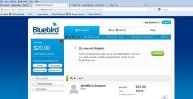 Cómo revisar saldo de la tarjeta Bluebird