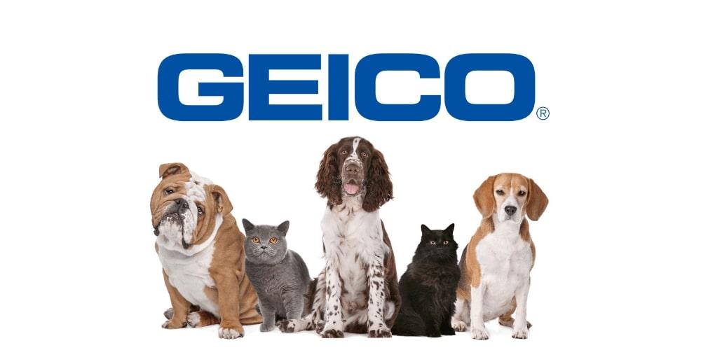 Seguro para mascotas GEICO