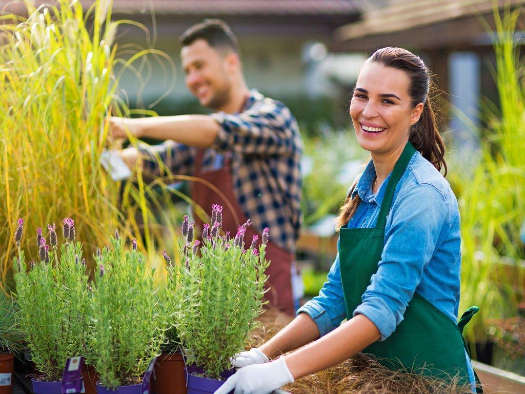 Cómo empezar un negocio de landscaping